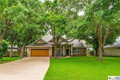 Georgetown Single Family Home For Sale: 106 Windmill Cove