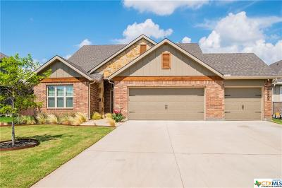 Belton Single Family Home For Sale: 5309 Lancaster Drive