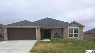 Killeen Single Family Home For Sale: 6703 Black Springs Drive