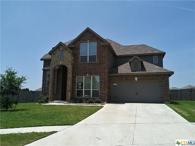 Killeen Single Family Home For Sale: 6709 Creek Land Road