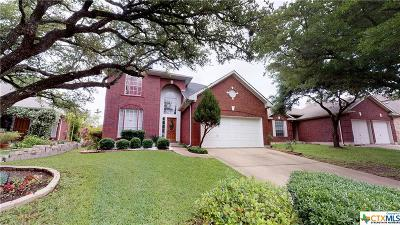 Round Rock Single Family Home For Sale: 3011 Pioneer Way