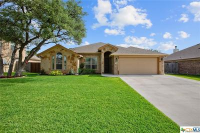 Belton Single Family Home For Sale: 2310 Yturria Drive