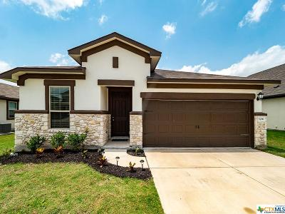 Round Rock Single Family Home For Sale: 5758 Porano Circle