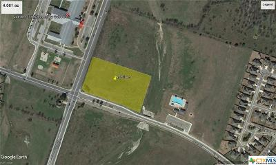 Temple Commercial For Sale: 4.061 Ac On S. Pea Ridge Road