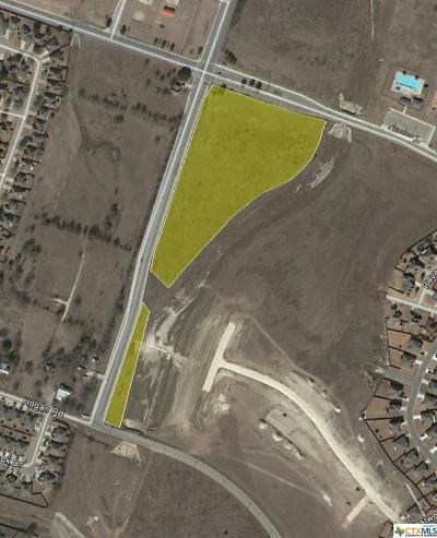 Temple Commercial For Sale: 6.987 Ac On S. Pea Ridge Rd