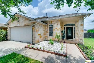Pflugerville Single Family Home For Sale: 1516 Fern Ridge Lane