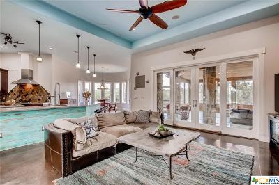 Williamson County Single Family Home For Sale: 1101 County Road 284