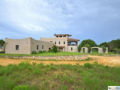 Wimberley Single Family Home For Sale: 11800 Fm 2325