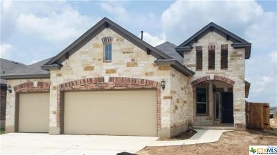 San Marcos Single Family Home For Sale: 209 Sawtooth Drive
