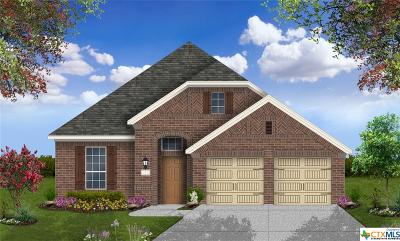 San Marcos TX Single Family Home For Sale: $359,258