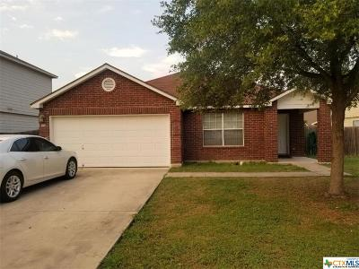 New Braunfels Single Family Home For Sale: 332 Big Hawk