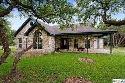 Driftwood Single Family Home For Sale: 871 Todo Lane