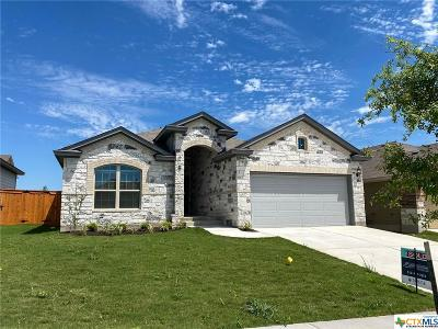 San Marcos Single Family Home For Sale: 121 Cypress Hills Drive