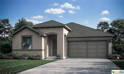 New Braunfels Single Family Home For Sale: 194 Landing Lane