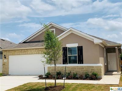 New Braunfels Single Family Home For Sale: 3932 Legend Rock