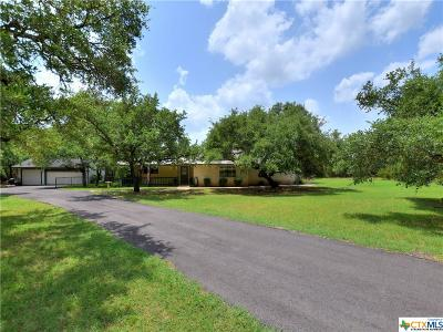 Georgetown Single Family Home For Sale: 2816 Oak Haven Circle
