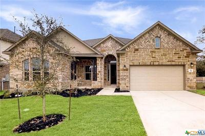 Boerne Single Family Home For Sale: 106 Fanwick Drive