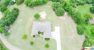 Bruceville-Eddy Single Family Home For Sale: 190 Friendly Oaks Drive