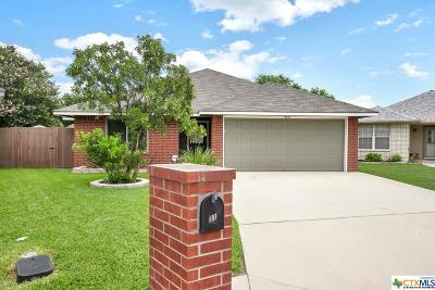 Single Family Home For Sale: 31 Sable Circle