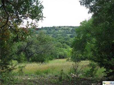 Bosque County, Bell County, Burnet County, Calhoun County, Coryell County, Lampasas County, Limestone County, Llano County, McLennan County, Mills County, Milam County, San Saba County, Williamson County, Hamilton County, Travis County, Comal County, Comanche County, Kendall County Single Family Home For Sale: 725 County Road 520