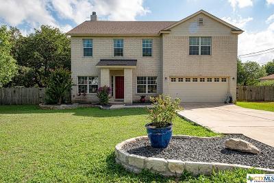 Kyle Single Family Home For Sale: 599 Bella Vista Circle