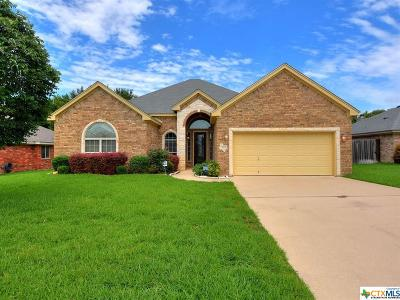 Belton Single Family Home For Sale: 3113 Matador Drive