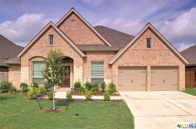 Seguin Single Family Home For Sale: 2932 Countryside Path