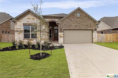 Helotes Single Family Home For Sale: 10634 Far Reaches Lane