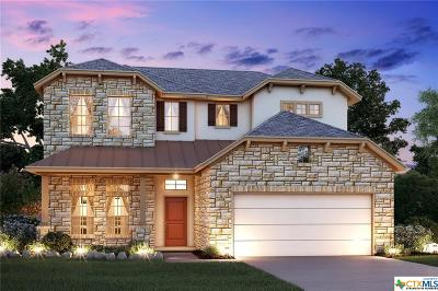 Helotes Single Family Home For Sale: 10529 Far Reaches Lane