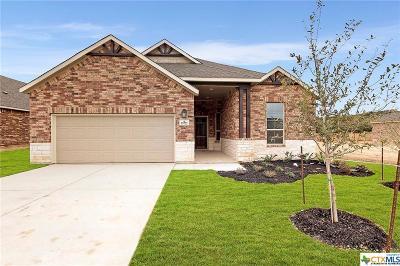 Helotes Single Family Home For Sale: 15722 La Subida Trail