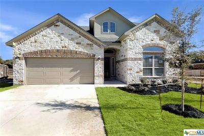 Helotes Single Family Home For Sale: 15734 La Subida Trail