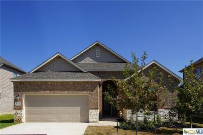 Helotes Single Family Home For Sale: 15738 La Subida Trail