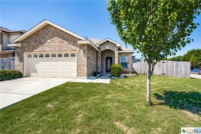Helotes Single Family Home For Sale: 9814 Leubeck Ranch