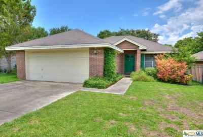New Braunfels Single Family Home For Sale: 920 Northpark Ridge