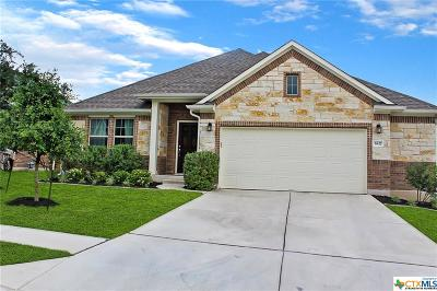 Round Rock Single Family Home For Sale: 5827 Othello Place