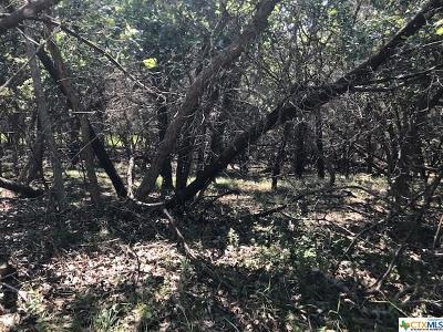 Temple Residential Lots & Land For Sale: 15944 Salado Drive