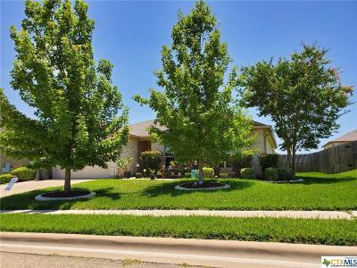 Killeen Single Family Home For Sale: 406 Sandra Sue Drive