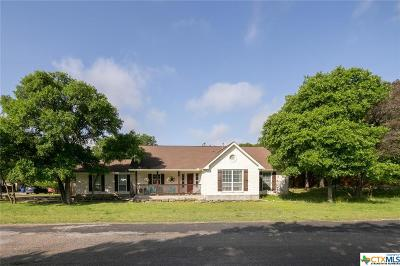Wimberley Single Family Home For Sale: 2 Country Place Drive