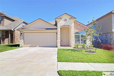 Killeen Single Family Home For Sale: 3419 Aubree Katherine Drive