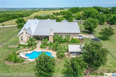 Guadalupe County Single Family Home For Sale: 441 Herrmann Hill