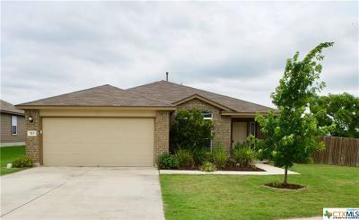 San Marcos Single Family Home For Sale: 313 Hoya Lane
