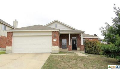Single Family Home For Sale: 6200 Nessy Drive