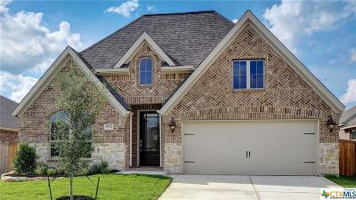 Boerne Single Family Home For Sale: 9712 Innes Place