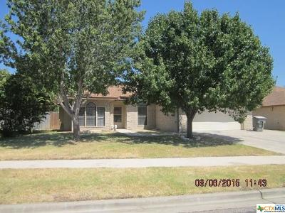 Killeen Single Family Home For Sale: 3305 Spotted Horse Drive