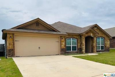 Killeen Single Family Home For Sale: 3010 Briscoe Drive Drive