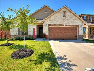 Georgetown Single Family Home For Sale: 108 Kavanaugh Street