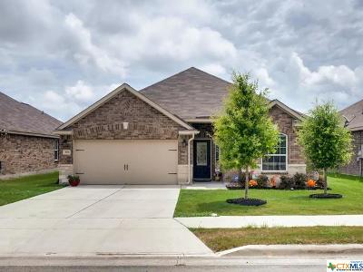 Comal County Single Family Home For Sale: 308 Amaryllis
