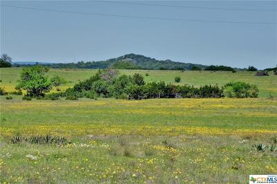 Williamson County Residential Lots & Land For Sale: 775 County Road 225