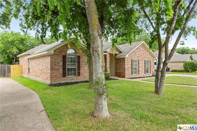 McLennan County Single Family Home For Sale: 736 Tahoe Trail