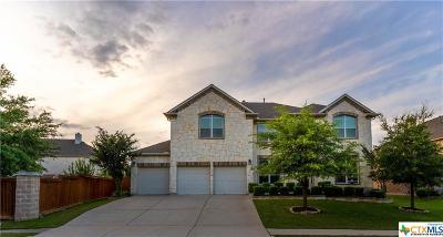 Pflugerville Single Family Home For Sale: 3008 Richfield Landing